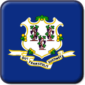 Connecticut State Flag Icon