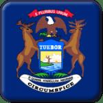 Michigan State Flag Icon