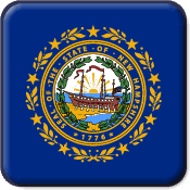 New Hampshire State Flag Icon