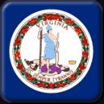 Virginia State Flag Icon